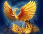 Avatar de Fenix